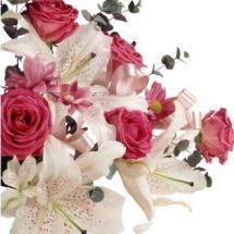 flower-گل (162)