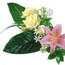 flower-گل (163)