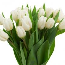 flower-گل (175)