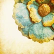 flower-گل (199)