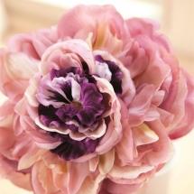 flower-گل (201)