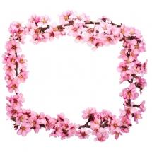 flower-گل (210)