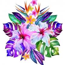 flower-گل (211)