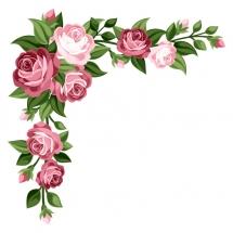 flower-گل (227)