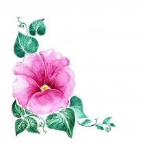 flower-گل (229)
