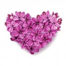 flower-گل (244)