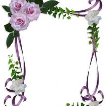 flower-گل (260)