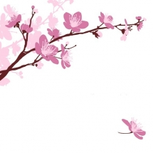 flower-گل (273)