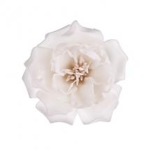 flower-گل (276)