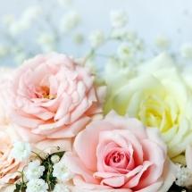 flower-گل (322)