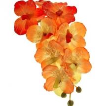 flower-گل (330)