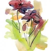 flower-گل (343)