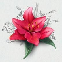 flower-گل (360)