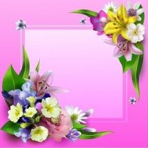 flower-گل (364)