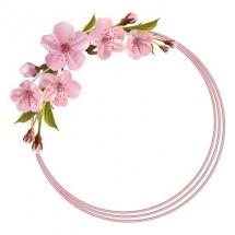 flower-گل (371)