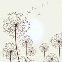 flower-گل (379)