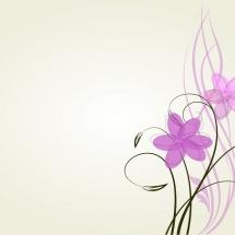 flower-گل (380)
