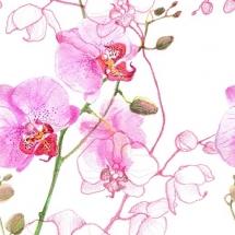 flower-گل (42)