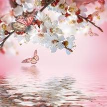 flower-گل (7)