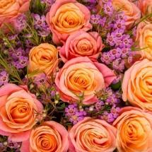 flower-گل (83)
