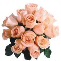 flower-گل (86)