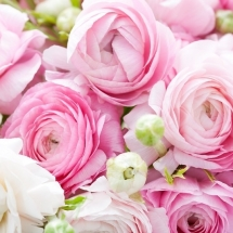 flower-گل (92)