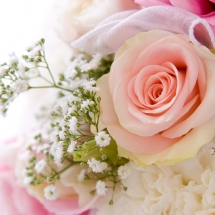 flower-گل (93)