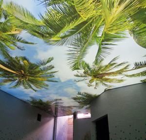 تاثیر استفاده از مناظر طبیعی سقف کشسان لابل در شادابی افراد