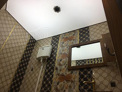 دکوراسیون سرویس بهداشتی با سقف ترنسپرنت