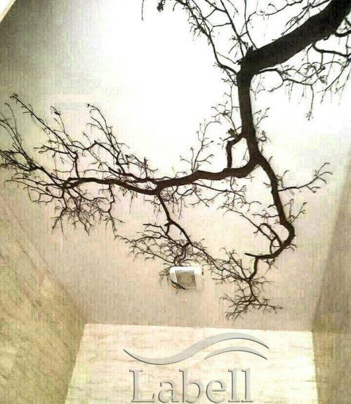 سقف کشسان طرح درخت سقف کشسان شیراز