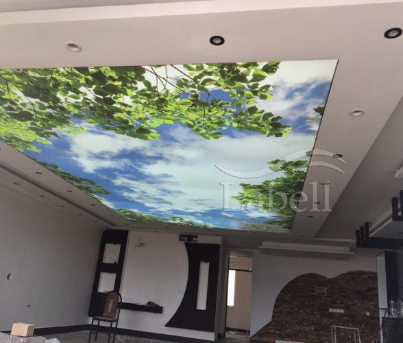 سقف کشسان مجلل