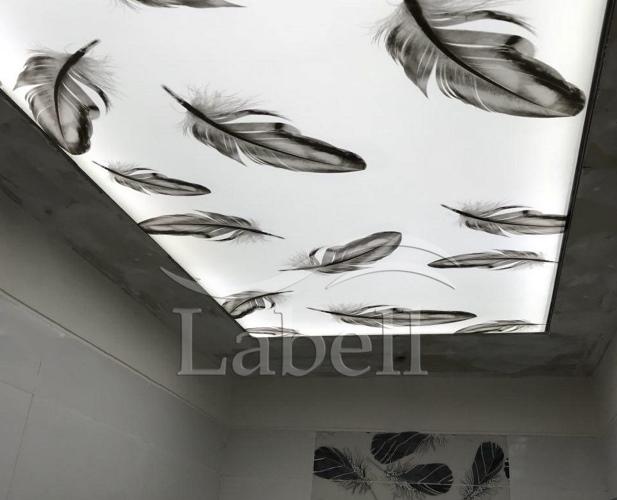 سقف کشسان در سرویس بهداشتی