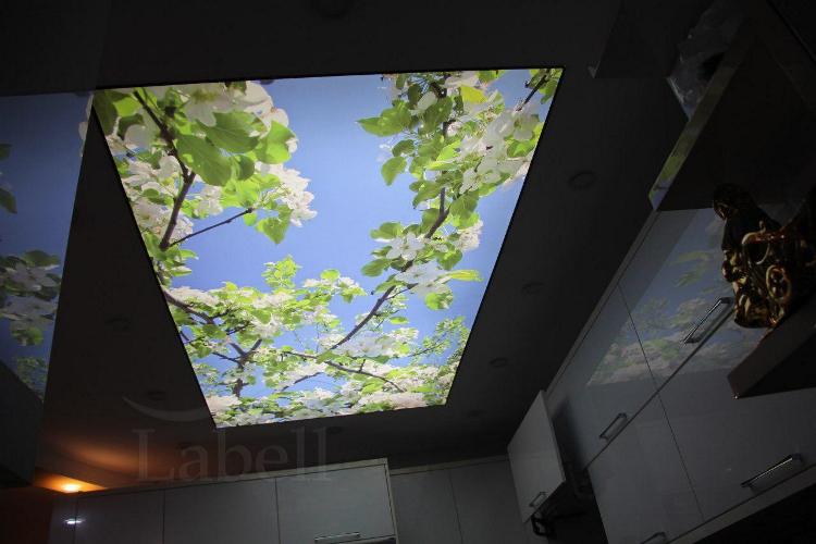 سقف کشسان دزفول