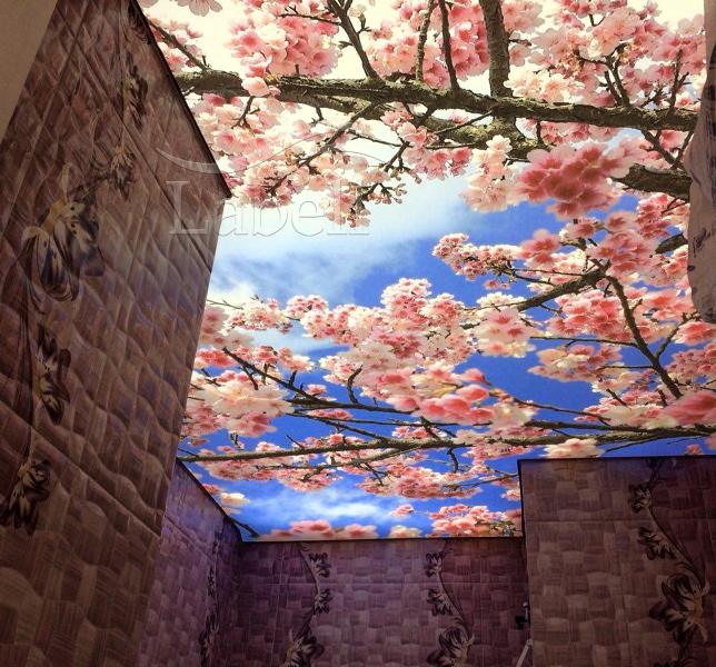 سقف کشسان، طبیعت در خانه